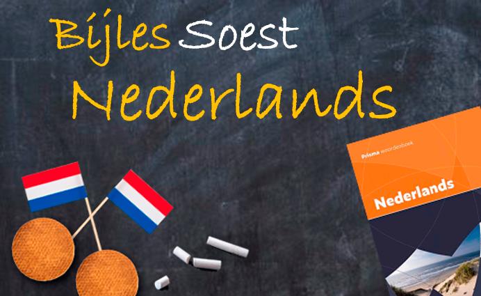 Bijles Soest bijles Nederlands blokblok